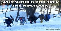 Why Should You Trek The Himalayas