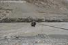 day3 photo - the pulley bridge crossing zanskar river in chilling